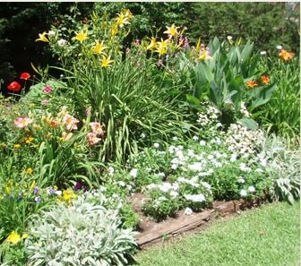 C mo armar un jard n con herb ceas perennes mdz online for Canteros con piedras y plantas