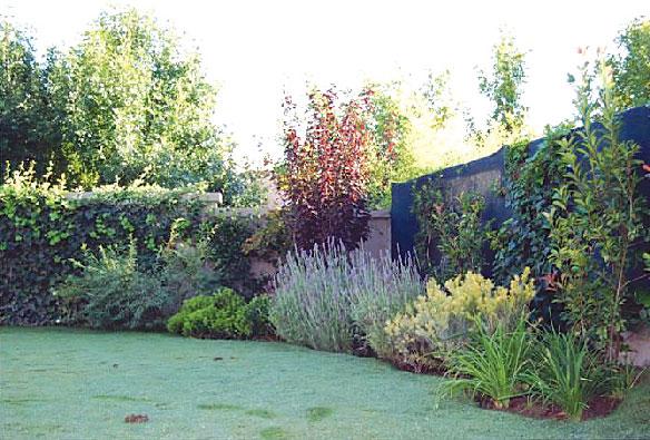 Paisajismo un jard n anfitri n de las cuatro estaciones for Arbustos en jardines