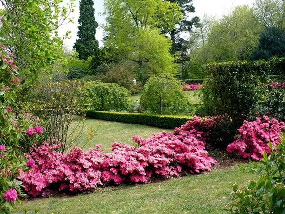 Como dise ar el jard n ideal mdz online for El jardin online
