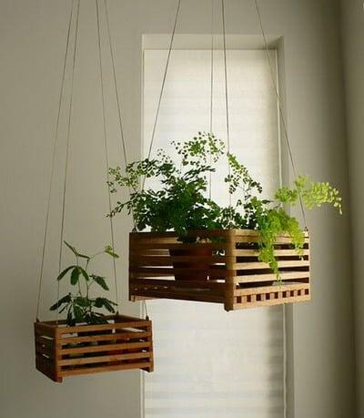 Plantas en macetas y cestos colgantes mdz online - Macetas pared ikea ...