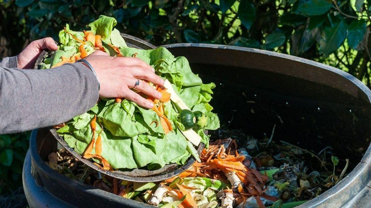 En Argentina se pierden o desperdician 16 millones de toneladas de alimentos  por año | MDZ Online